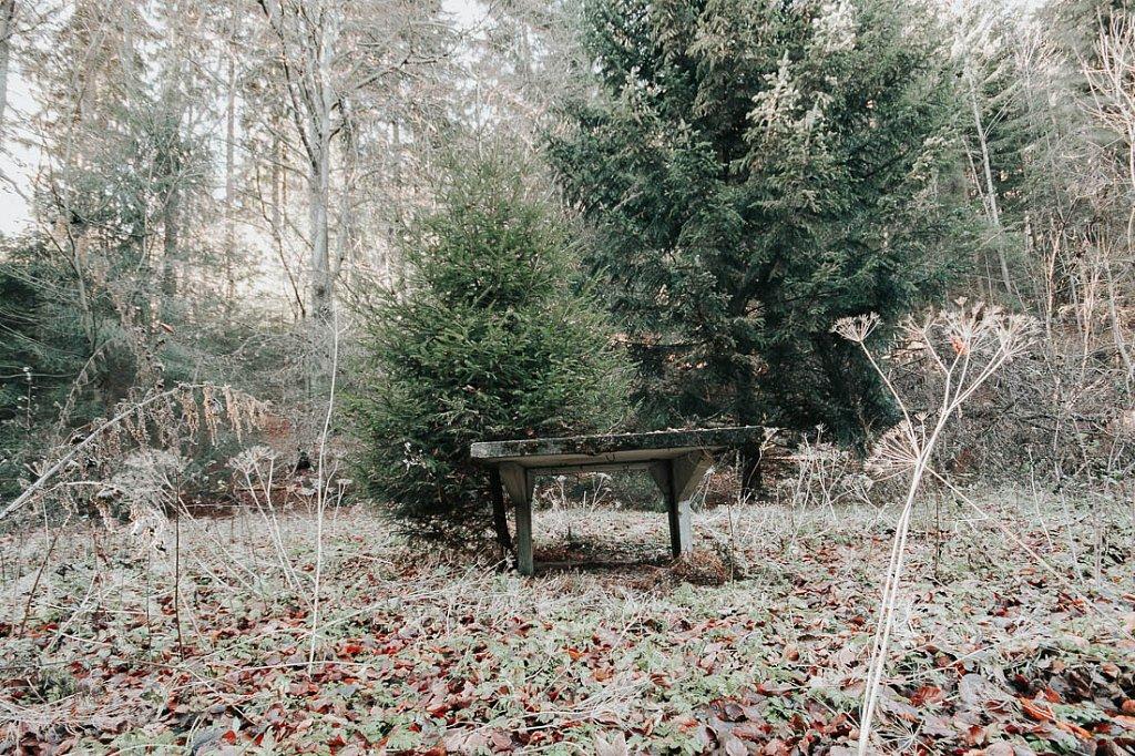 20111127-Gasthof-17-3.jpg